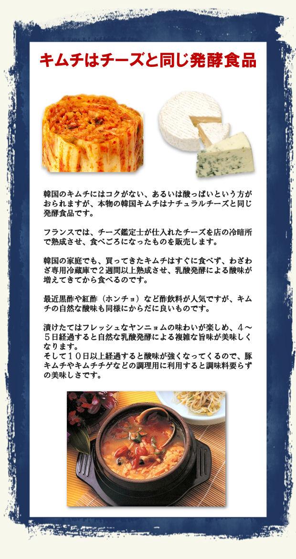 韓国伝統キムチはナチュラルチーズと同じ発酵食品